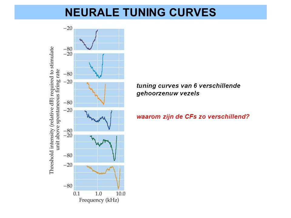 NEURALE TUNING CURVES tuning curves van 6 verschillende gehoorzenuw vezels.