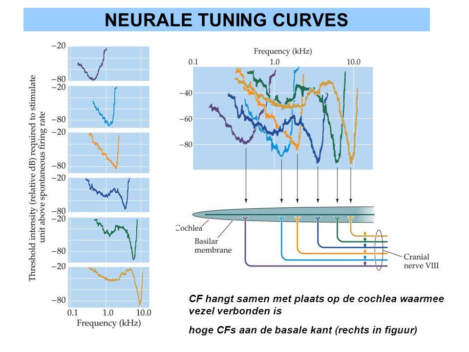 NEURALE TUNING CURVES CF hangt samen met plaats op de cochlea waarmee vezel verbonden is.