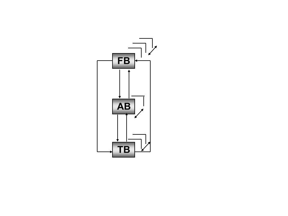 Figuur 3.8 Meervoudige samenhang tussen de drie beheervormen (bron: Looijen, 2004)