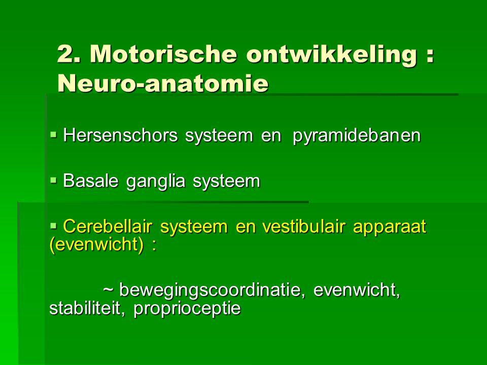 2. Motorische ontwikkeling : Neuro-anatomie
