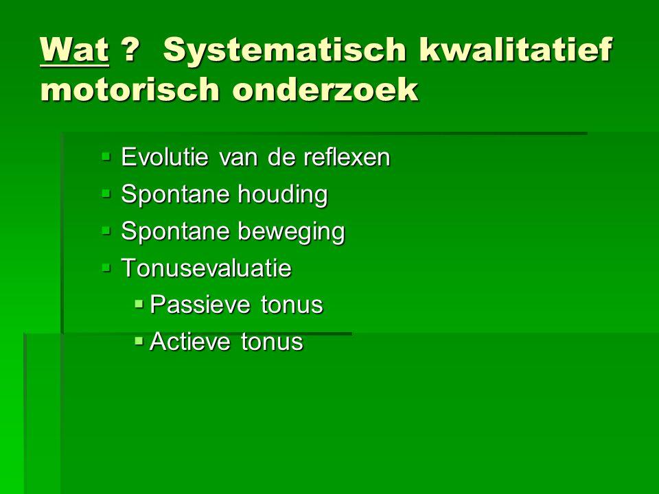Wat Systematisch kwalitatief motorisch onderzoek