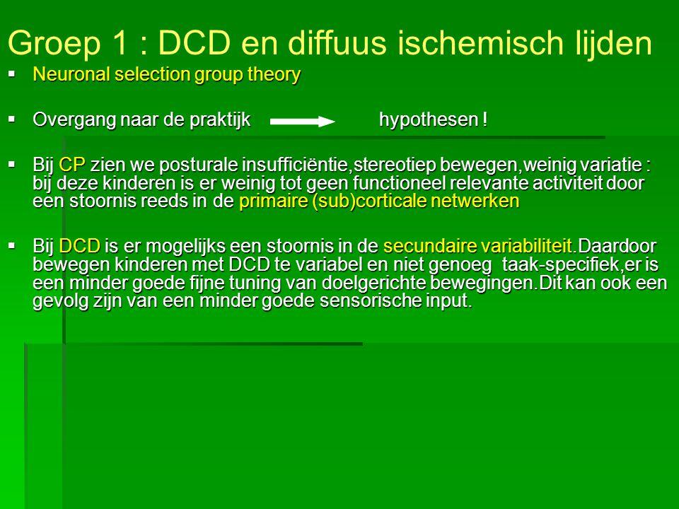 Groep 1 : DCD en diffuus ischemisch lijden