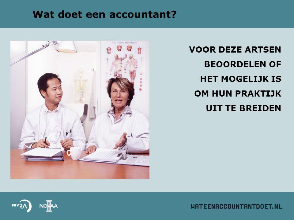 Wat doet een accountant