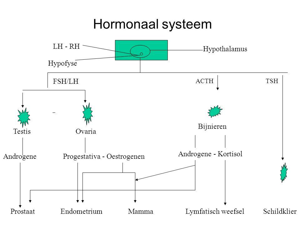 Hormonaal systeem LH - RH Hypothalamus Hypofyse FSH/LH Bijnieren