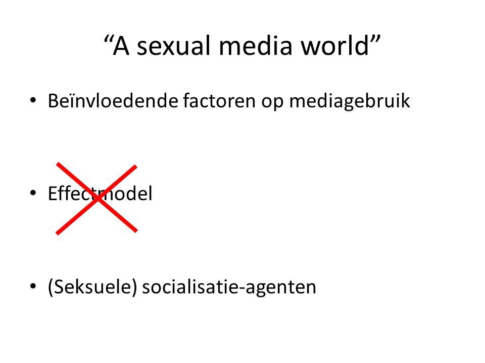 A sexual media world Beïnvloedende factoren op mediagebruik
