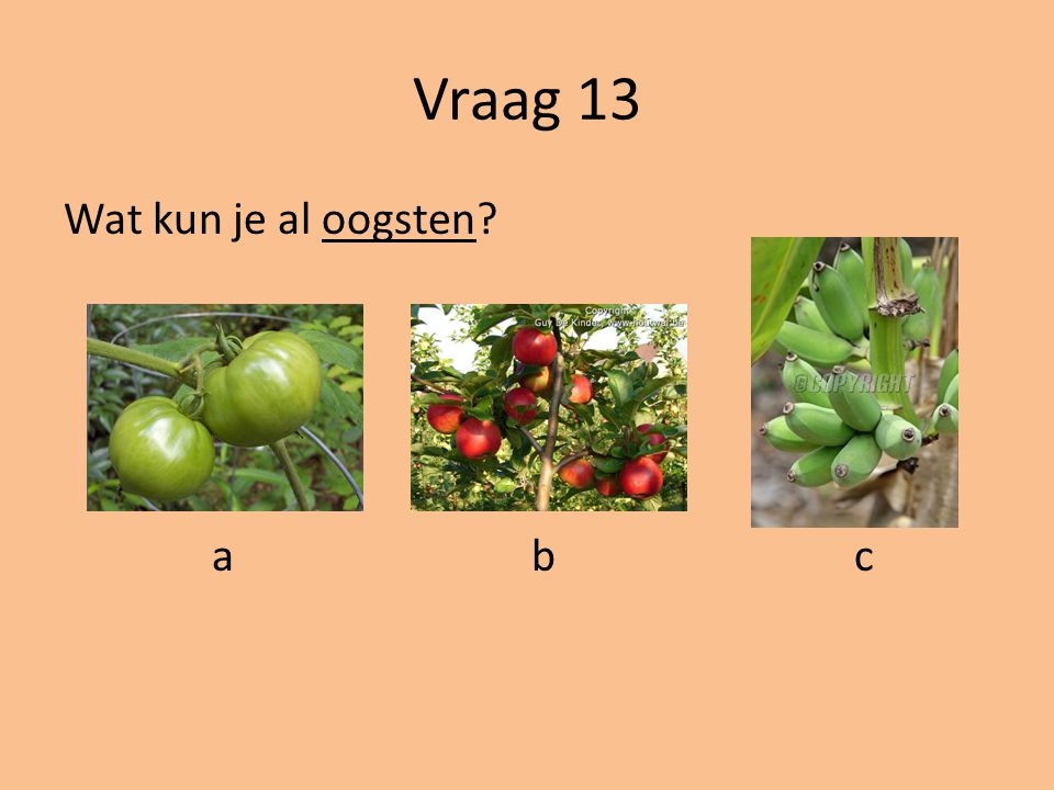 Vraag 13 Wat kun je al oogsten a b c