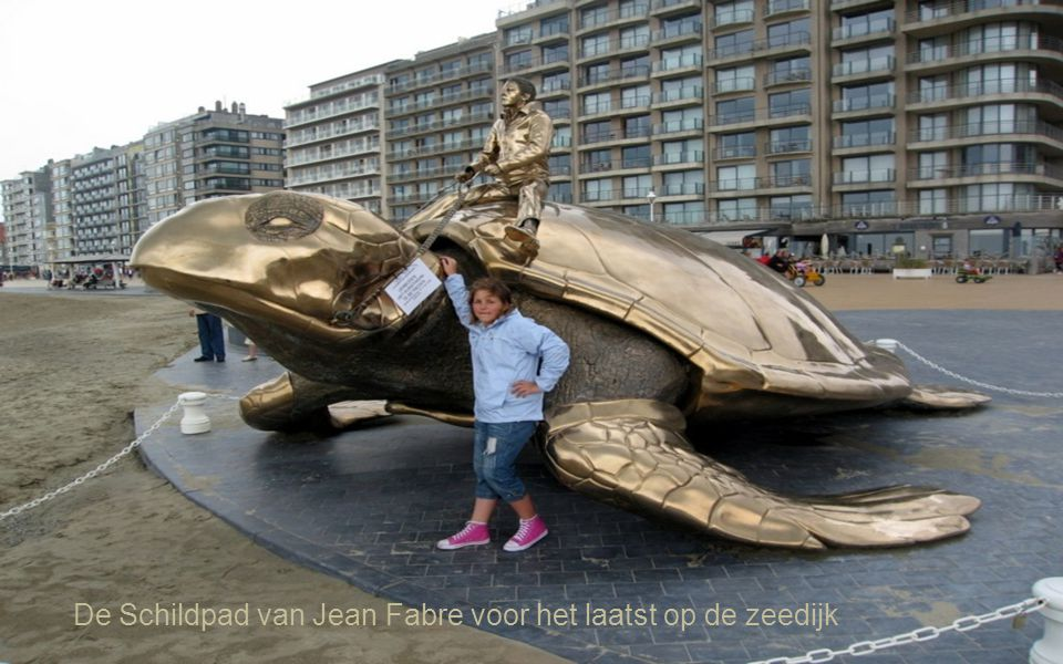 De Schildpad van Jean Fabre voor het laatst op de zeedijk