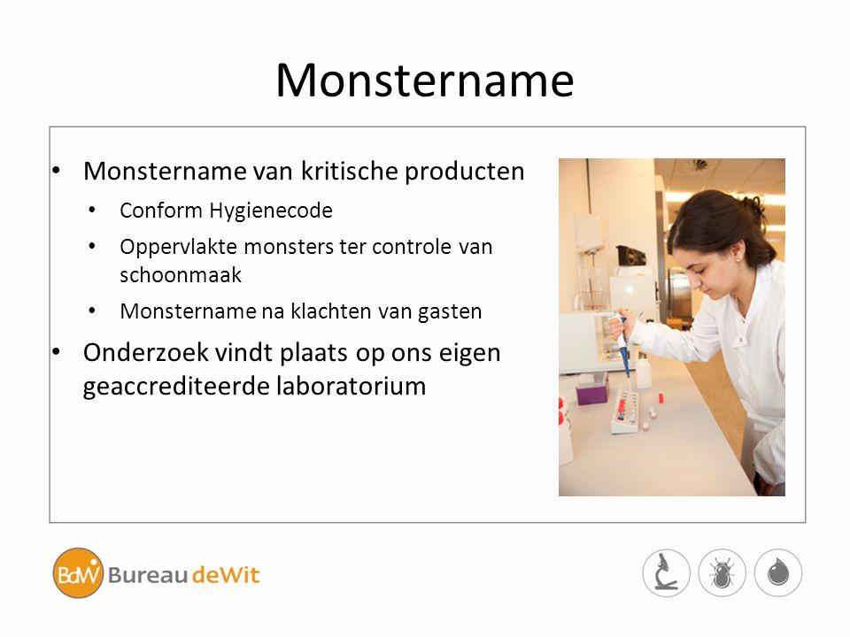 Monstername Monstername van kritische producten