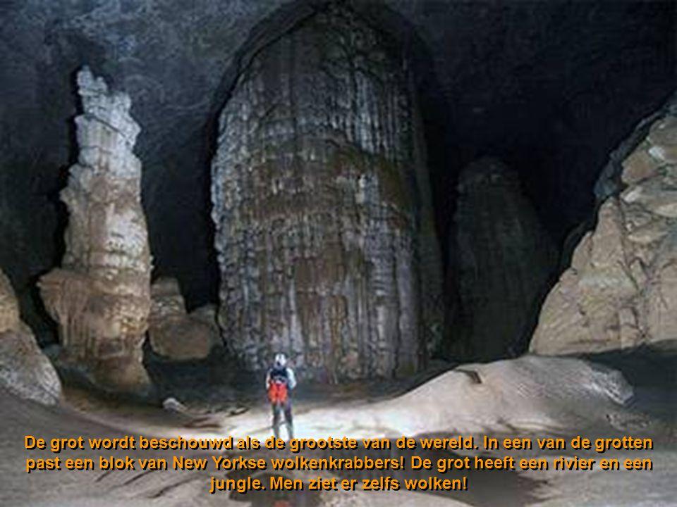 De grot wordt beschouwd als de grootste van de wereld