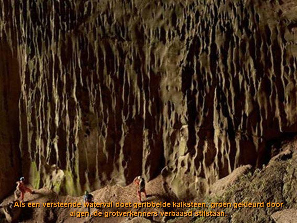 Als een versteende waterval doet geribbelde kalksteen, groen gekleurd door algen, de grotverkenners verbaasd stilstaan.