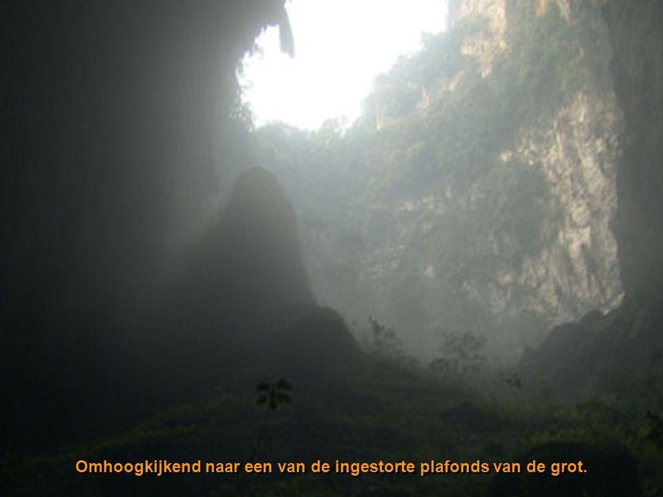 Omhoogkijkend naar een van de ingestorte plafonds van de grot.