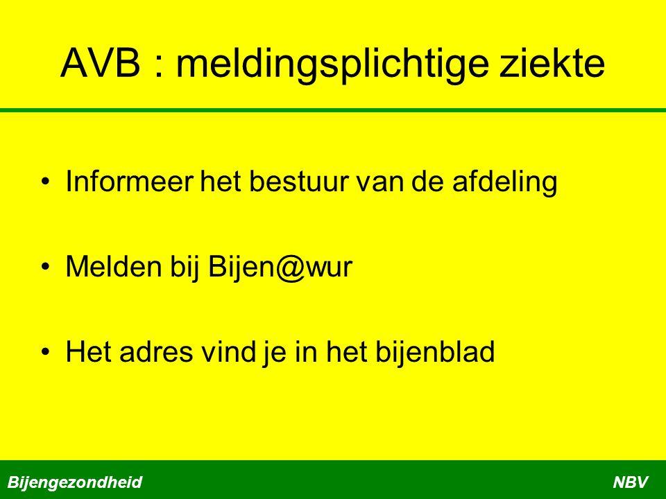 AVB : meldingsplichtige ziekte