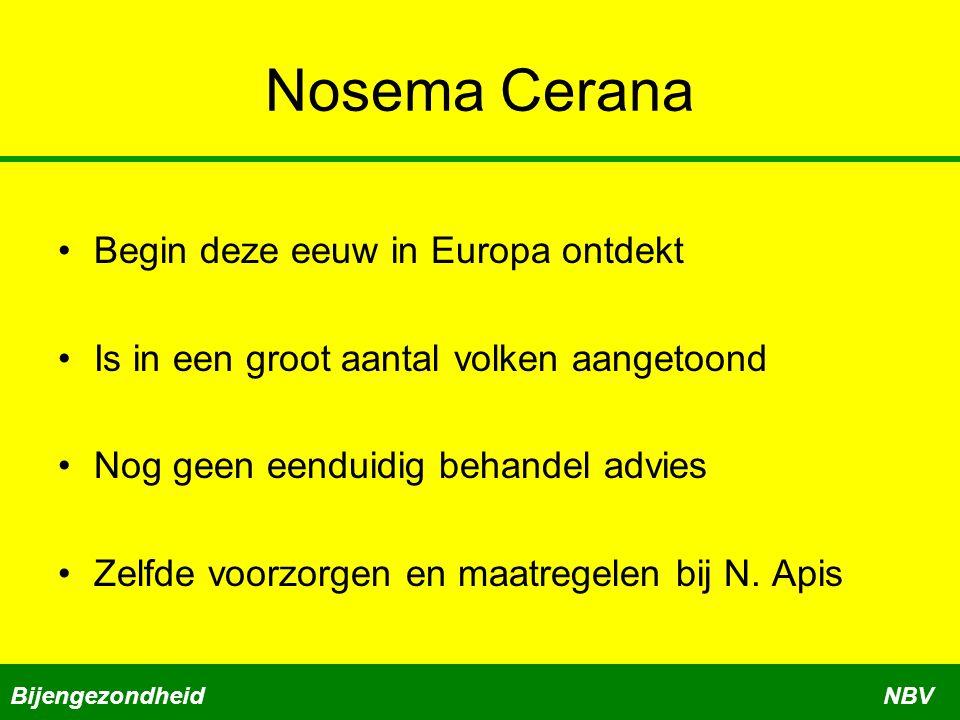 Nosema Cerana Begin deze eeuw in Europa ontdekt