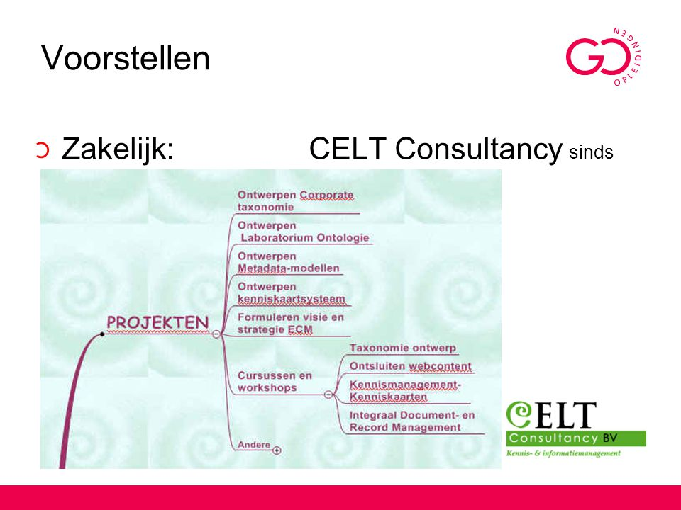 Voorstellen Zakelijk: CELT Consultancy sinds 1993