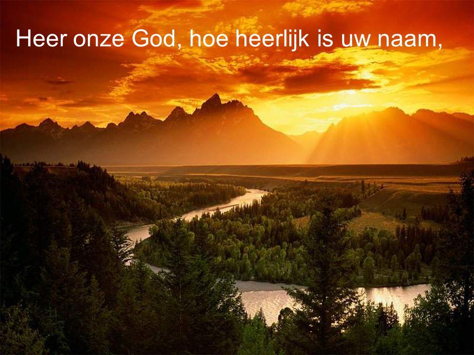 Heer onze God, hoe heerlijk is uw naam,