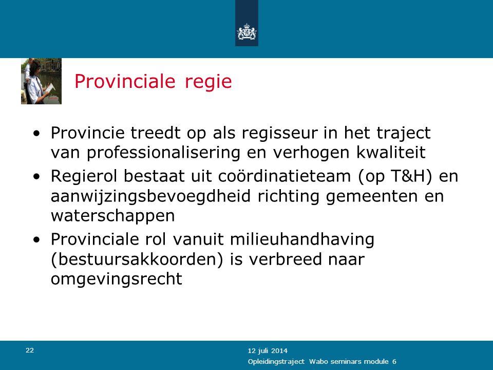 Provinciale regie Provincie treedt op als regisseur in het traject van professionalisering en verhogen kwaliteit.