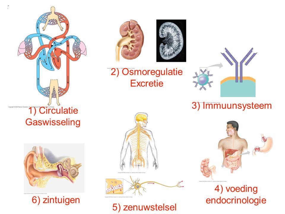 1) Circulatie Gaswisseling. 2) Osmoregulatie. Excretie. 3) Immuunsysteem. 5) zenuwstelsel. 4) voeding.