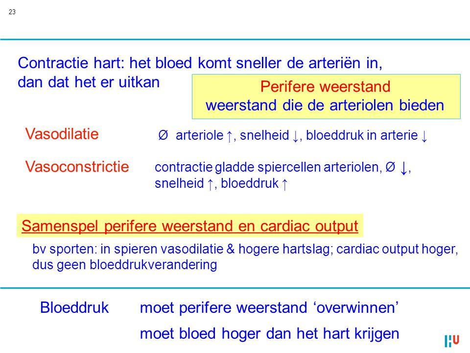 Contractie hart: het bloed komt sneller de arteriën in,