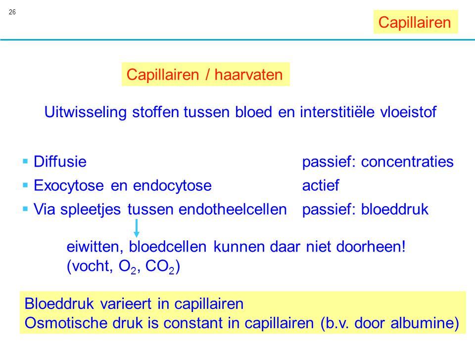 Capillairen Capillairen / haarvaten. Uitwisseling stoffen tussen bloed en interstitiële vloeistof.