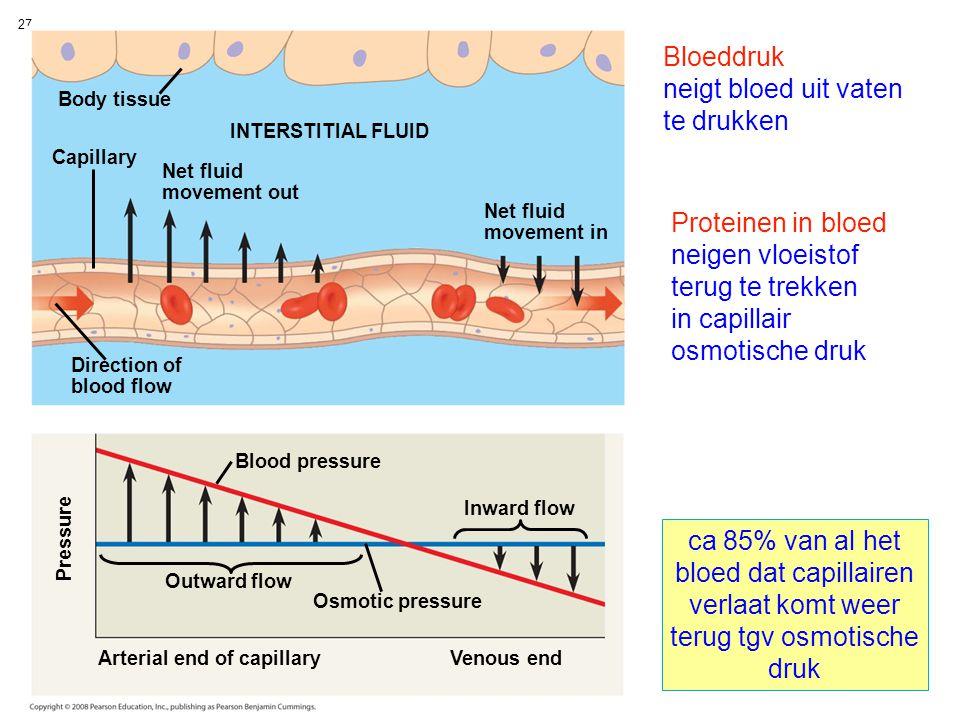 Bloeddruk neigt bloed uit vaten te drukken Proteinen in bloed