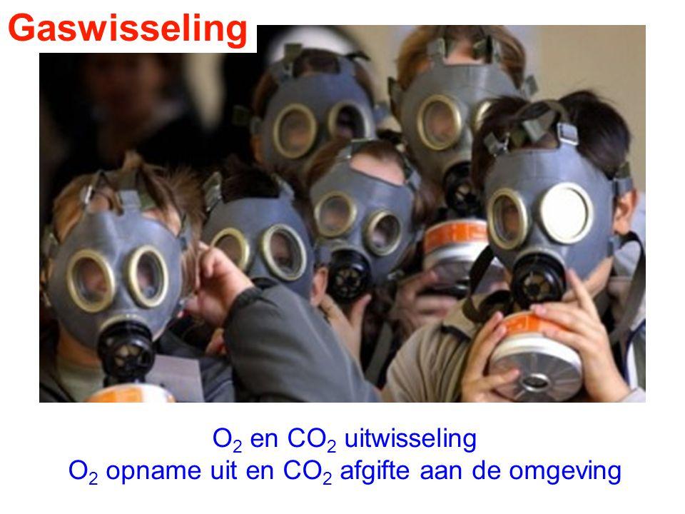 O2 opname uit en CO2 afgifte aan de omgeving