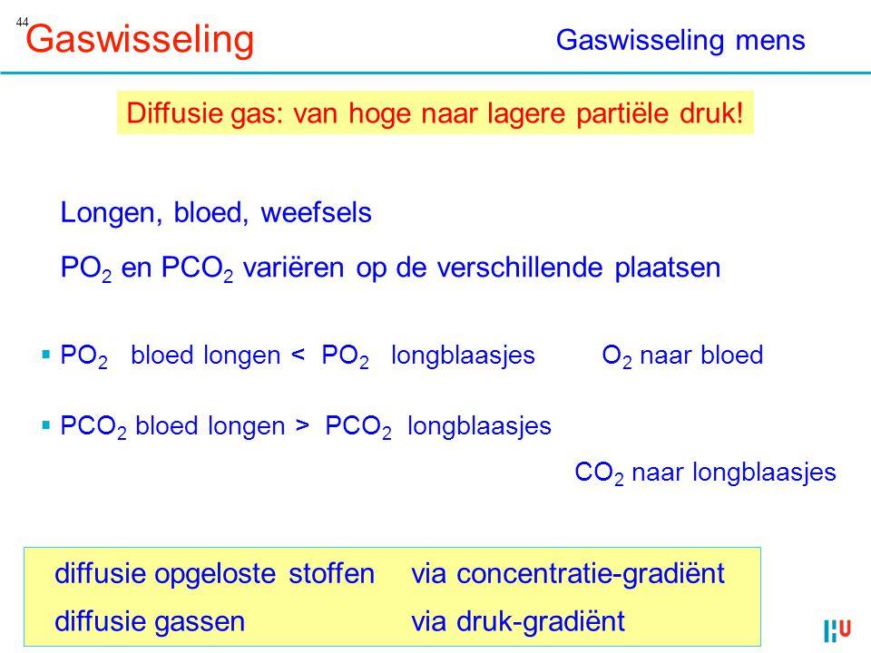 Gaswisseling Gaswisseling mens