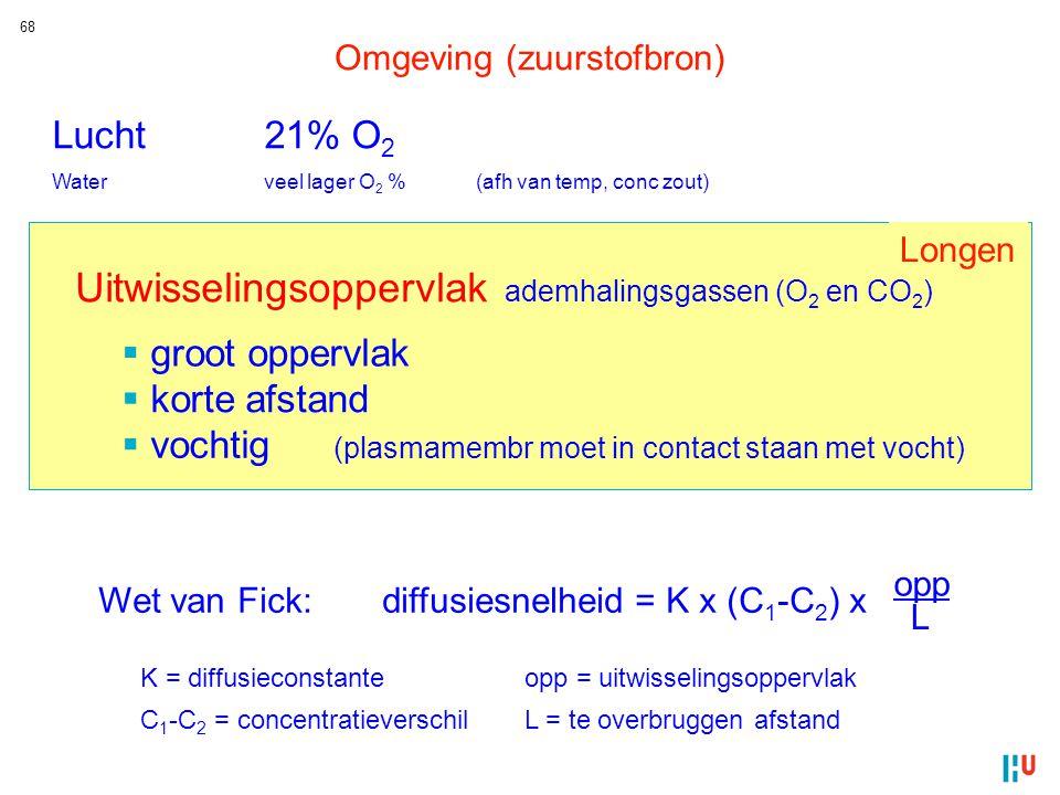 Uitwisselingsoppervlak ademhalingsgassen (O2 en CO2)