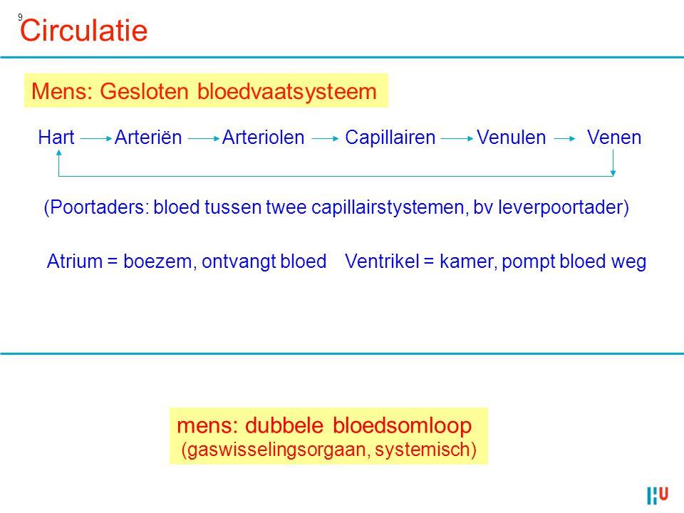 Circulatie Mens: Gesloten bloedvaatsysteem mens: dubbele bloedsomloop