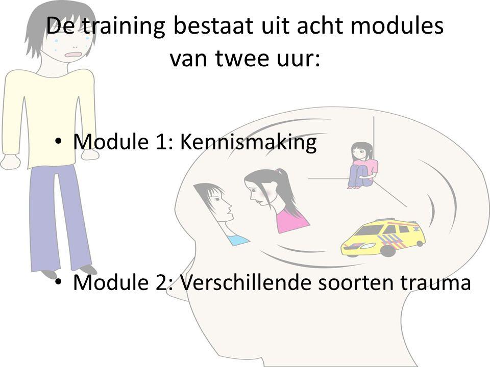 De training bestaat uit acht modules van twee uur: