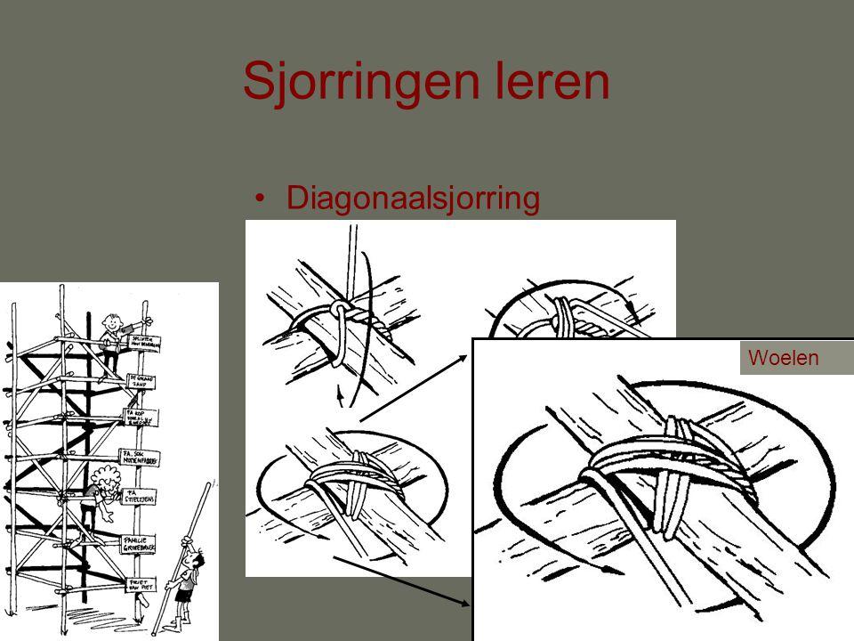 Sjorringen leren Diagonaalsjorring Woelen
