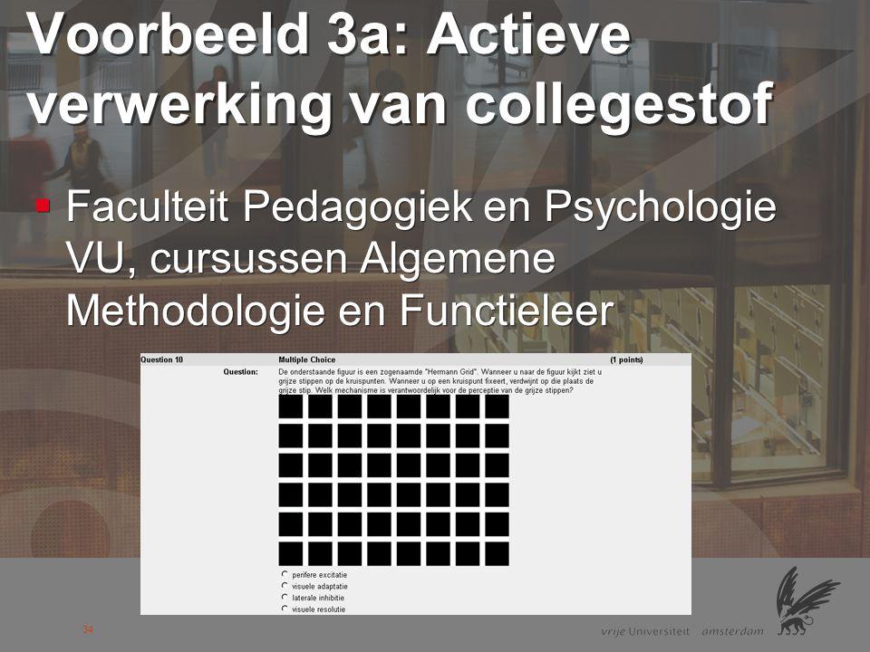 Voorbeeld 3a: Actieve verwerking van collegestof