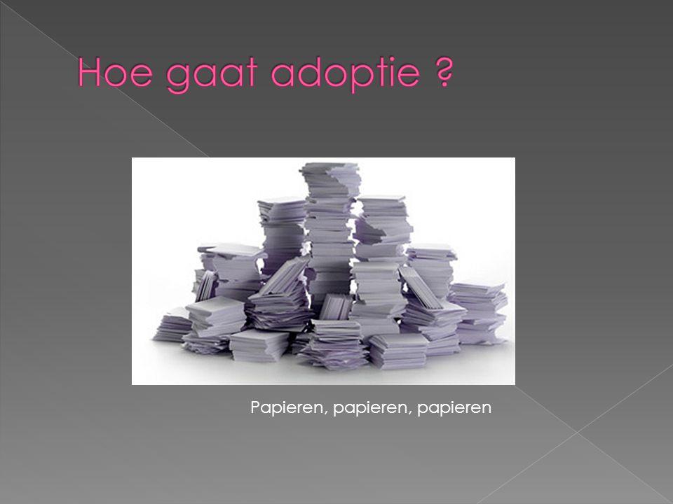 Hoe gaat adoptie Papieren, papieren, papieren