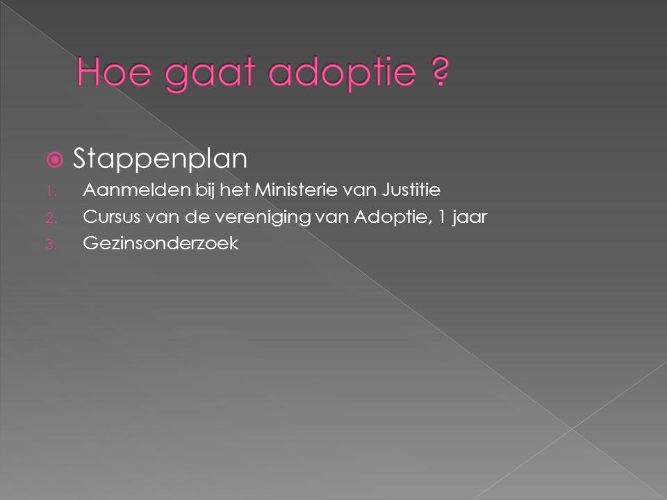 Hoe gaat adoptie Stappenplan