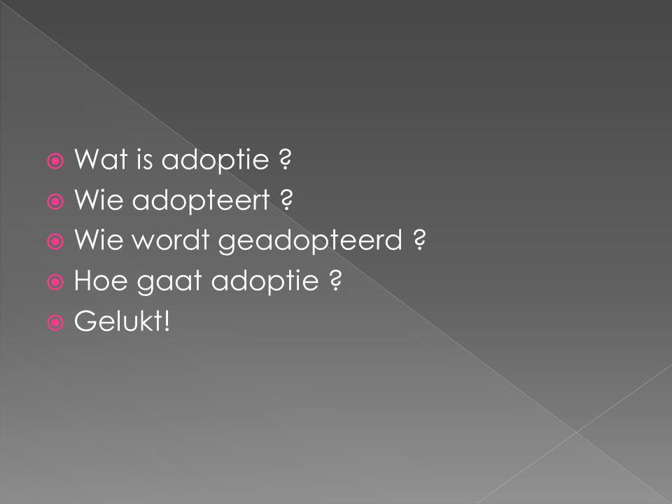 Wat is adoptie Wie adopteert Wie wordt geadopteerd Hoe gaat adoptie Gelukt!