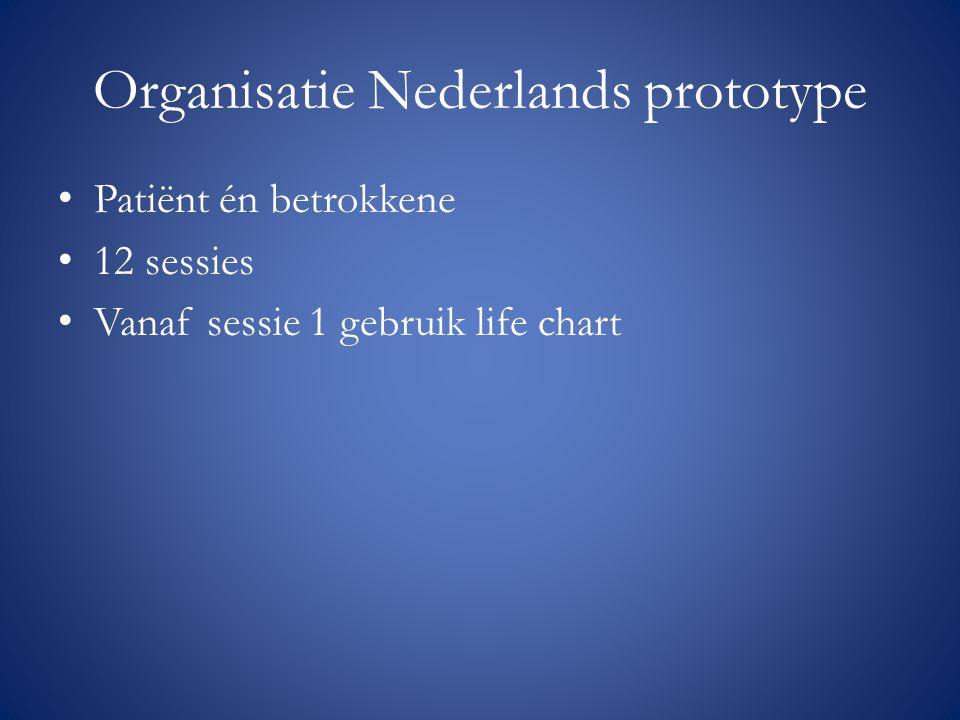 Organisatie Nederlands prototype