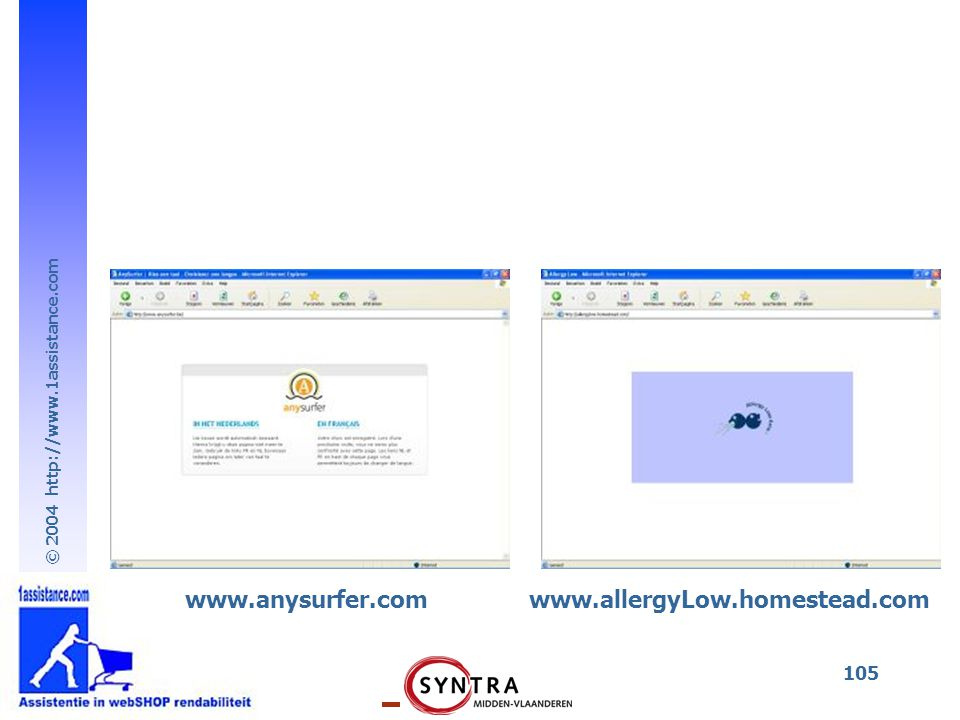 www.anysurfer.com www.allergyLow.homestead.com