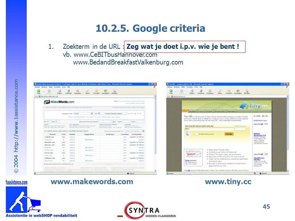 10.2.5. Google criteria www.makewords.com www.tiny.cc