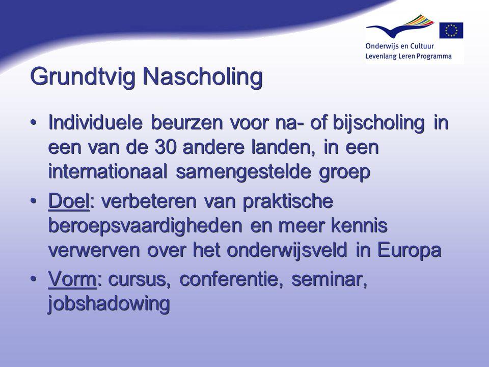 4-4-2017 Grundtvig Nascholing. Individuele beurzen voor na- of bijscholing in een van de 30 andere landen, in een internationaal samengestelde groep.