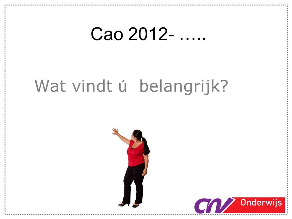 Cao 2012- ….. Wat vindt ú belangrijk