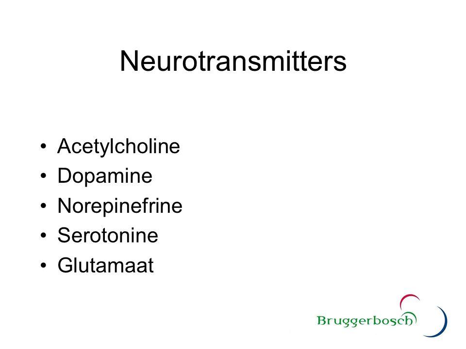 Neurotransmitters Acetylcholine Dopamine Norepinefrine Serotonine