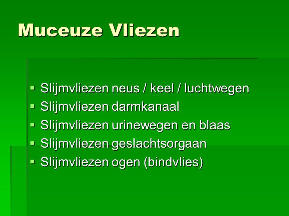 Muceuze Vliezen Slijmvliezen neus / keel / luchtwegen