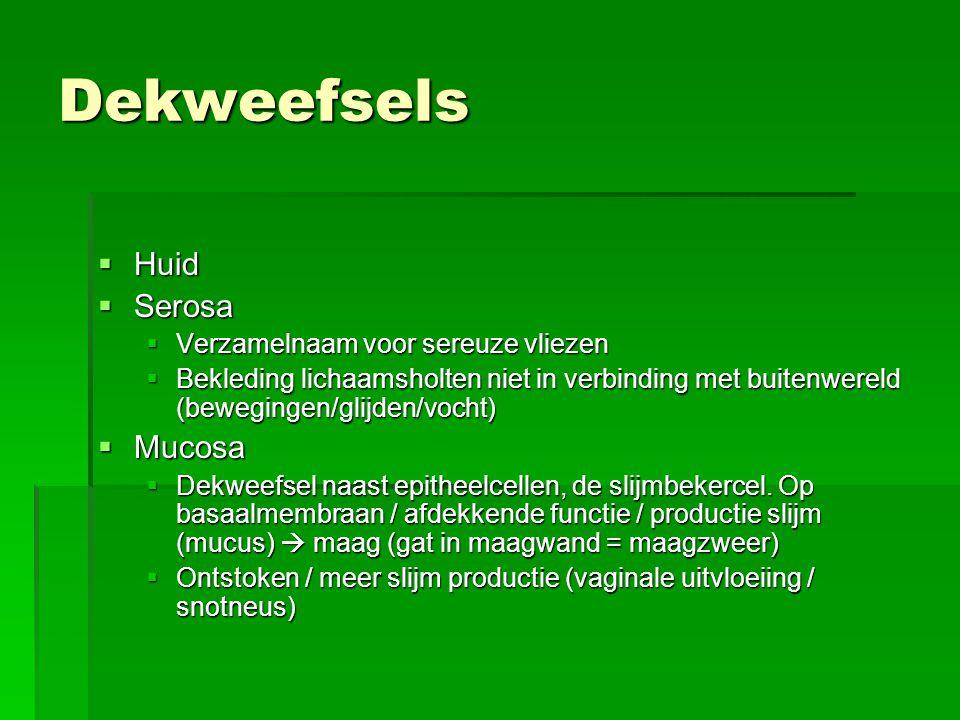 Dekweefsels Huid Serosa Mucosa Verzamelnaam voor sereuze vliezen