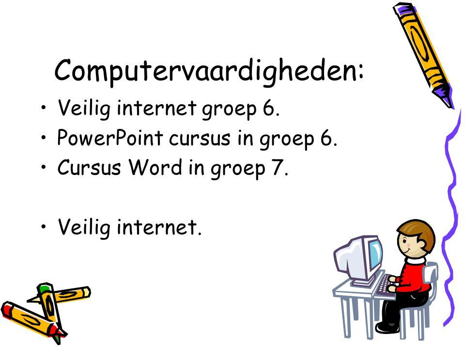 Computervaardigheden: