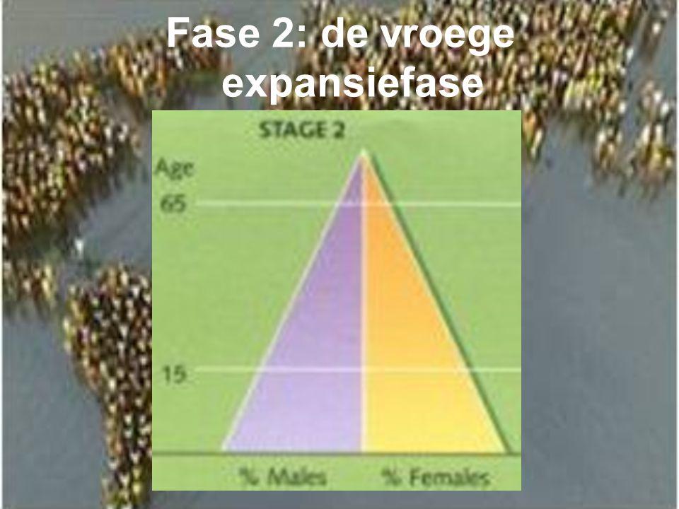 Fase 2: de vroege expansiefase