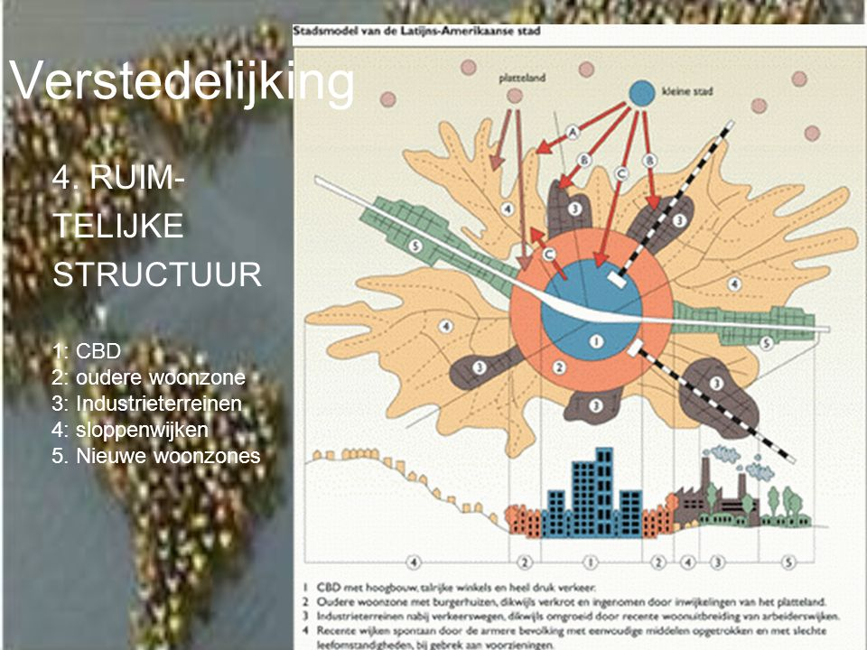 Verstedelijking 4. RUIM- TELIJKE STRUCTUUR 1: CBD 2: oudere woonzone