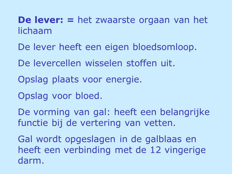 De lever: = het zwaarste orgaan van het lichaam