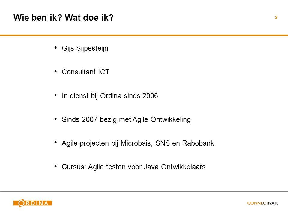 Wie ben ik Wat doe ik Gijs Sijpesteijn Consultant ICT