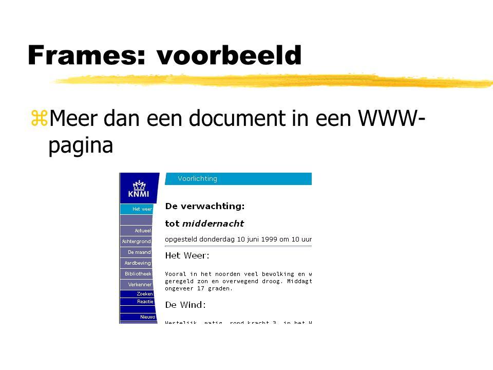 Frames: voorbeeld Meer dan een document in een WWW-pagina