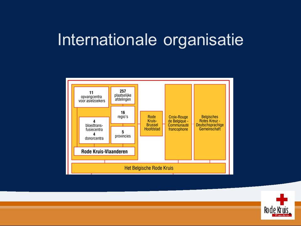 Internationale organisatie