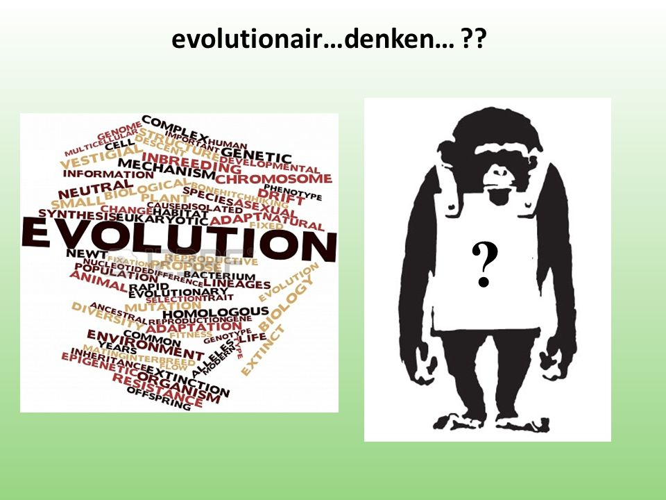 evolutionair…denken…